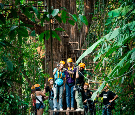 Ziplining through a lush jungle